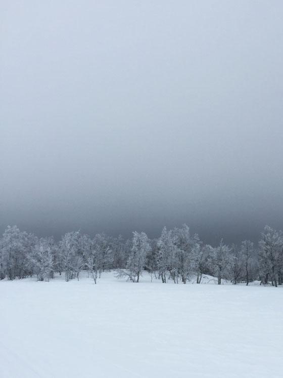 Kristine-Norlander-iPhone-Photos-19